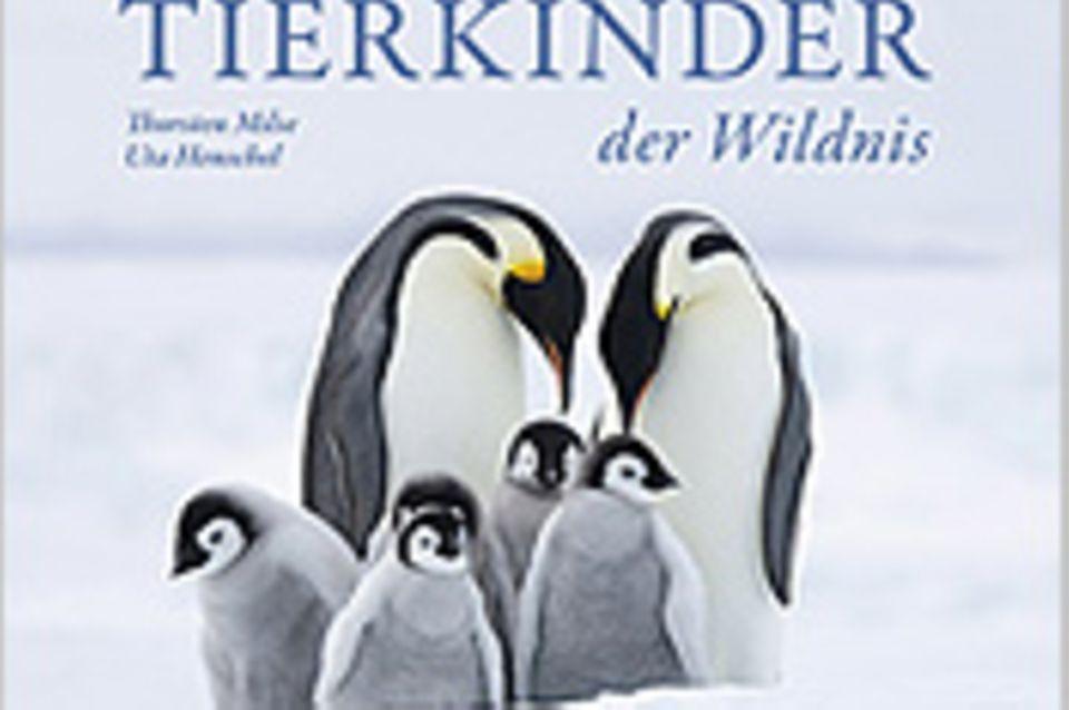 """""""Tierkinder der Wildnis"""""""