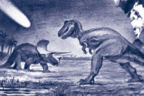 Was ist dran am Kreationismus?