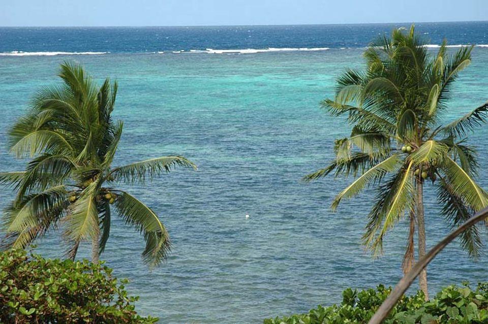 Vom Haus sieht man verheißungsvoll das blaue Meer glitzern