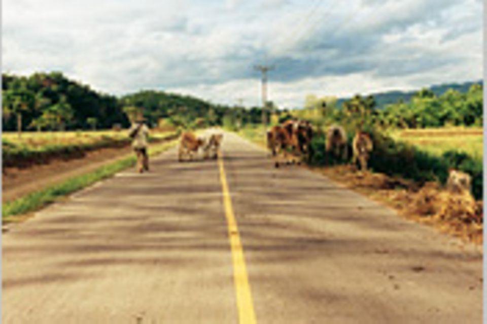 Thailand: Mit dem Mietauto durch das Land