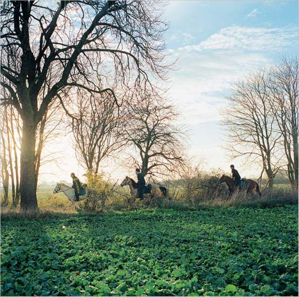 Belohnung: Jedes Sauwetter klart irgendwann auf, und die Reiter genießen die spätherbstliche Sonne, hier bei Radensleben