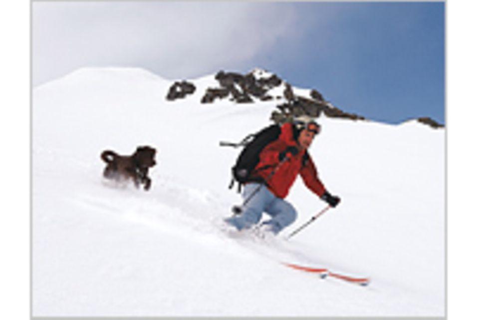 Skitrend: Parallelschwung mit dem Hund