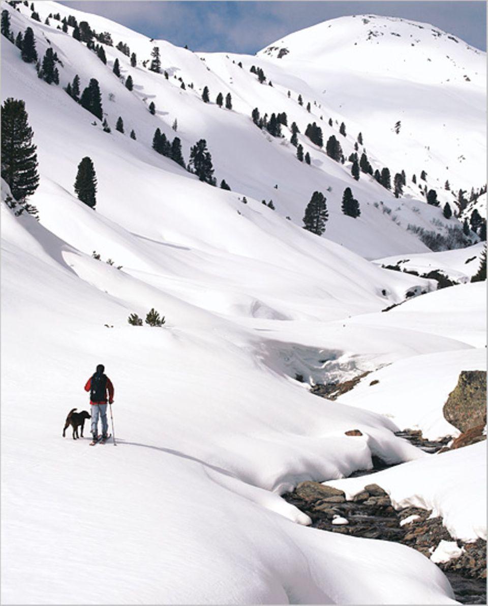 Erste Lektion für Labrador Bruno im Trattenbachtal: Nicht in die Skispitzen beißen!