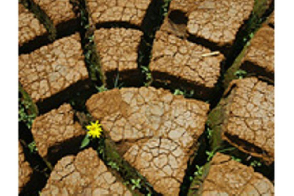 Klima-Mythen