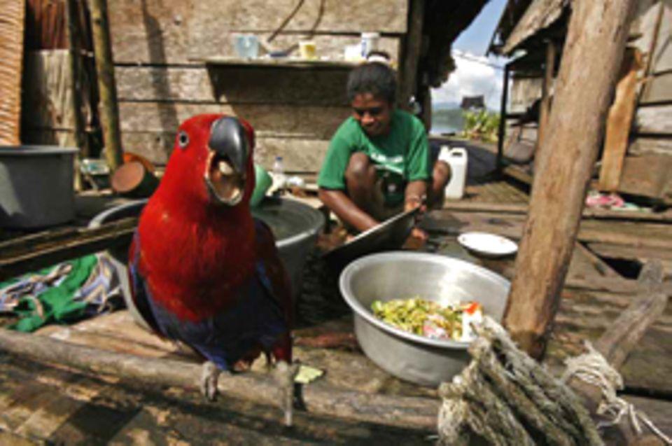 Viele der Menschen von Raja Ampat leben in abgelegenen Pfahlbau-Siedlungen und haben kaum Zugang zu Märkten, in denen sie ihre Produkte verkaufen könnten