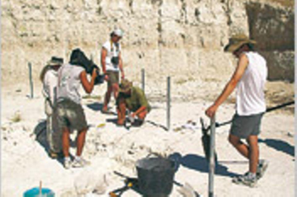Archäologie: Schatzsuche für die Wissenschaft