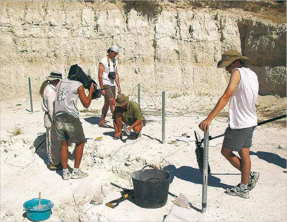 Bei den Urahnen in Spanien: Zeugnisse der Neandertaler werden gesichert