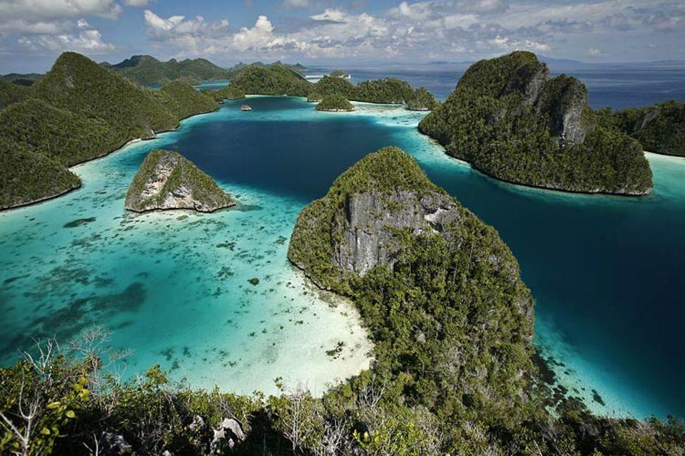 Raja Ampat: Wie Drachenrücken strecken sich die bewaldeten Kalksteinfelsen in der flachen See des Inselreichs aus. Menschen leben hier kaum. Dafür umso mehr Meeresschildkröten, Clownfische und Paradiesvögel