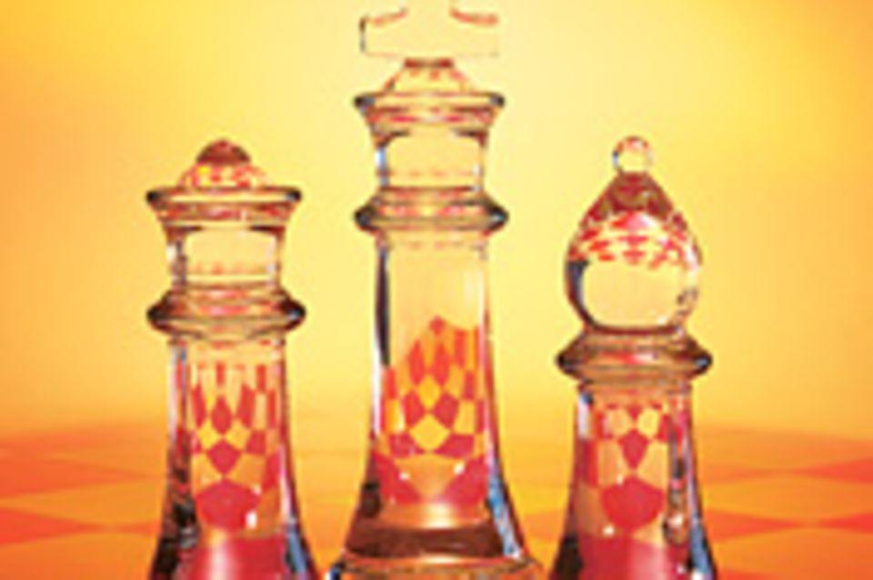 Chessmaster: Schach für Jedermann