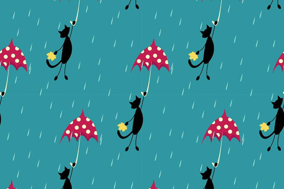 Englische Redewendung: It is raining cats and dogs