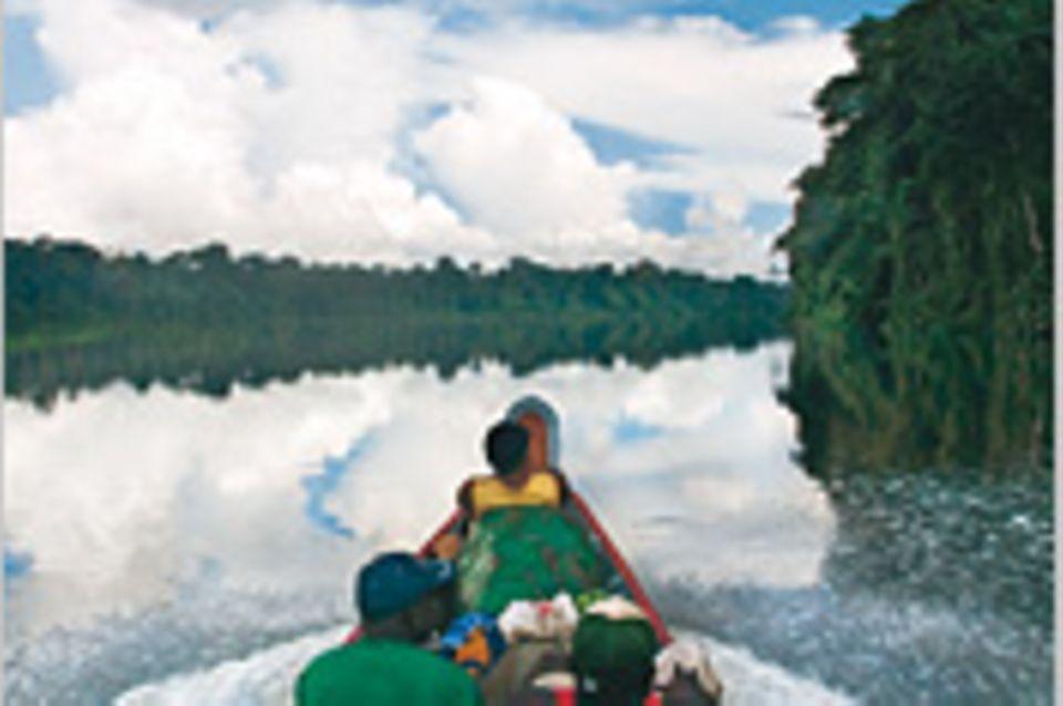 Suriname: Im Einbaum durch den Urwald