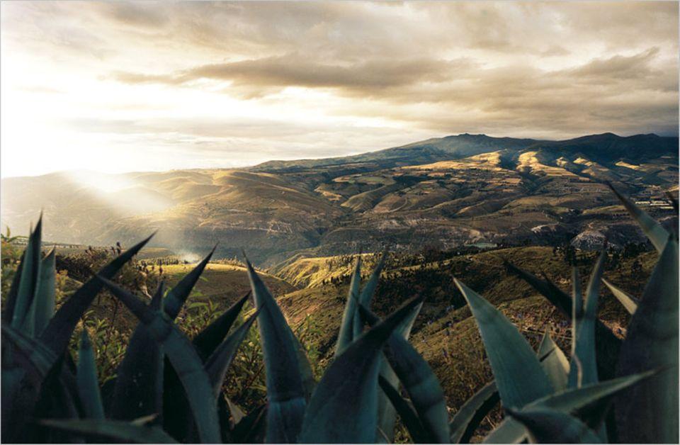 Spot an! Etwa dort, wo der Sonnenstrahl auftrifft, verläuft der Äquator durch das Tal von Guayllabamba. Hier befinden sich auch die Pyramiden von Cochasquí