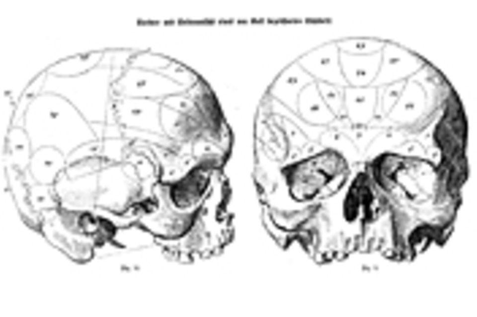 Das Gehirn: Phrenologie