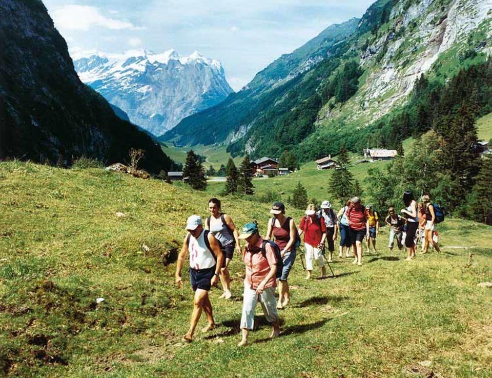 Aufstieg zur Engstlenalp: Auf Bergwiesen geht es sich barfuß wie auf Samt
