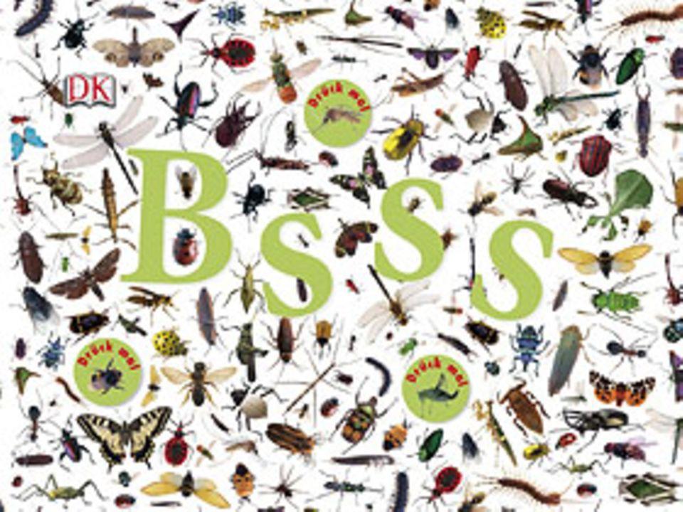 Buchtipp: Bsss – die ganze Welt der Insekten