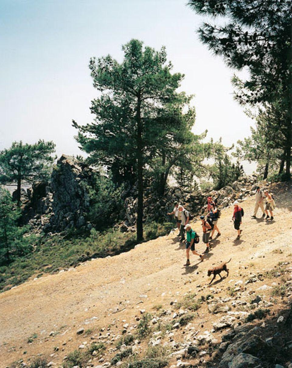 Wandergruppendynamik im Besparmak-Gebirge
