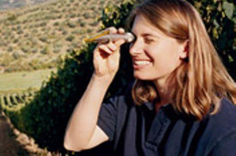 Schöne Weingüter in der Toskana