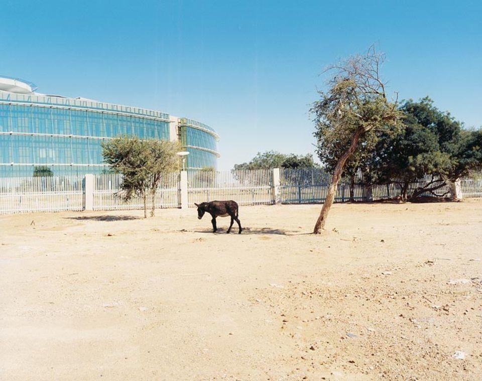 "Neu eröffnete ""Diamond Trading Company Botswana"""