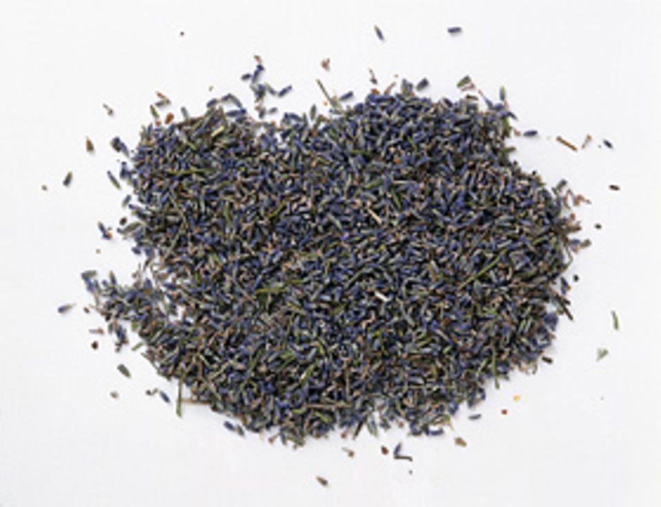 Sanfte Medizin: Hausmittel: Lavendel