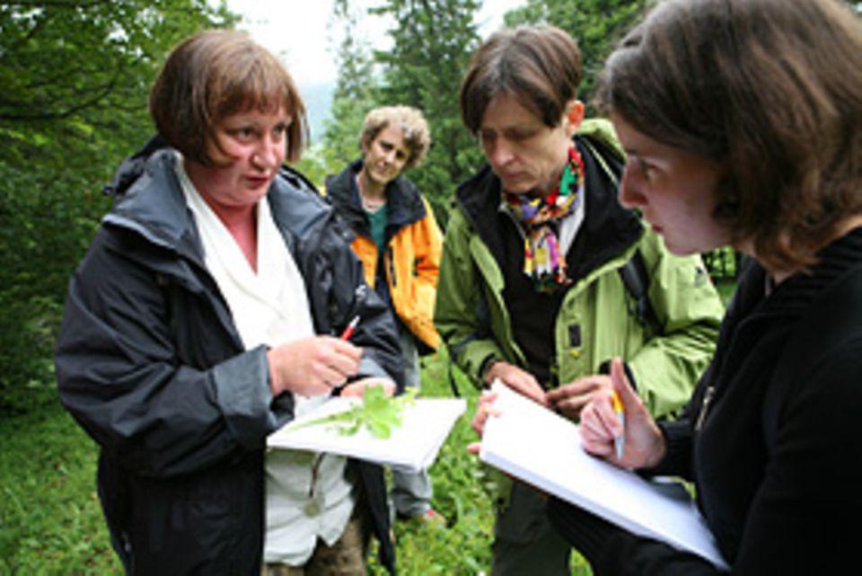 Sanfte Medizin: Wer einen grünen Schatz in den Händen hält, diskutiert und bestimmt ihn mit den anderen Teilnehmern