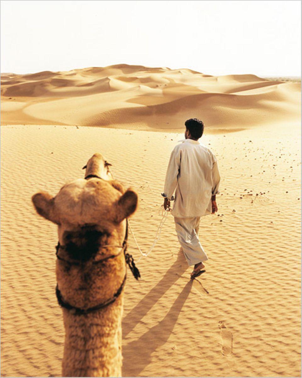 Touristentransport durch die Wüste Thar