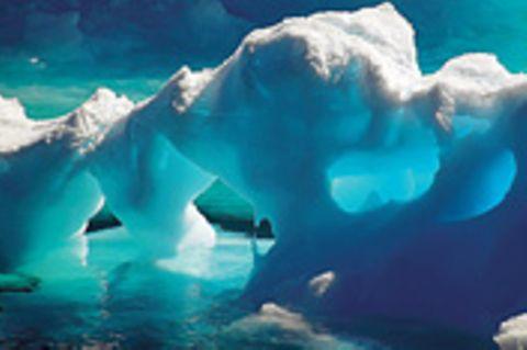 Leserfoto des Monats - Februar 2009