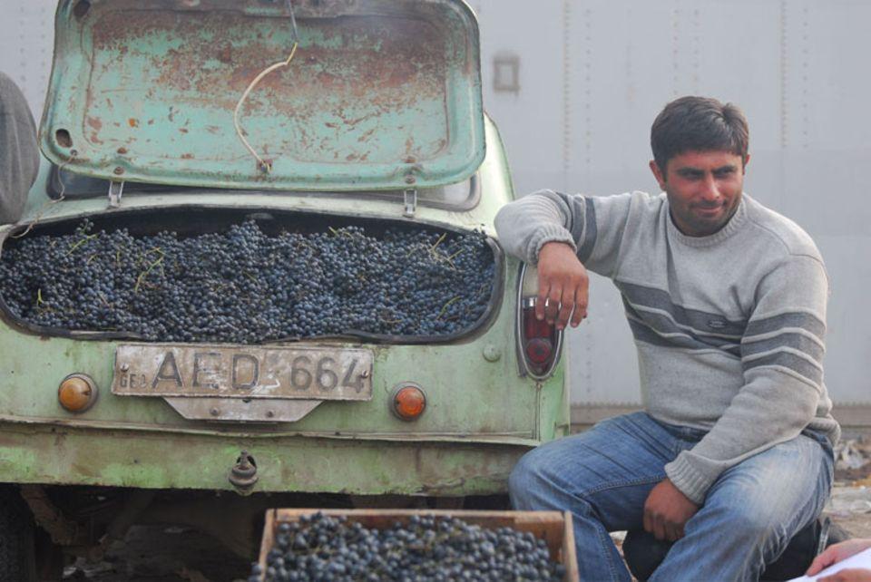 Ein georgischer Weinbauer bietet seine Trauben auf dem Markt von Tbilisi an
