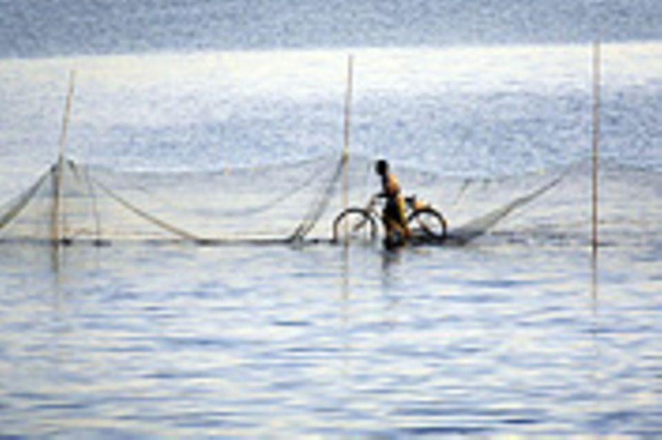 Schiebepuzzle: Nr. 73: Fahrrad auf Wasser