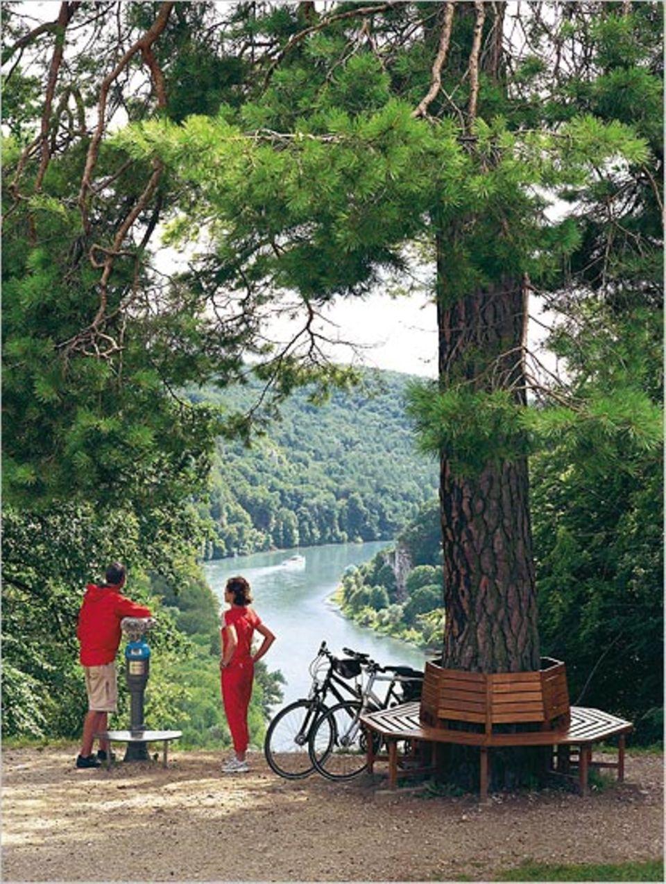 Weitblick aufs Donautal vom Michelsberg