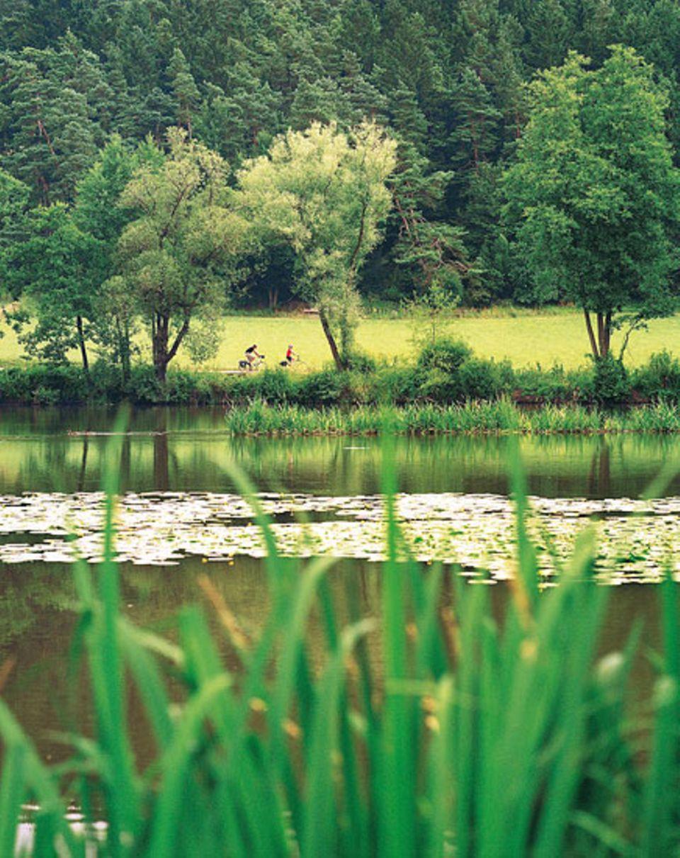 Am Fluss bei Dietldorf