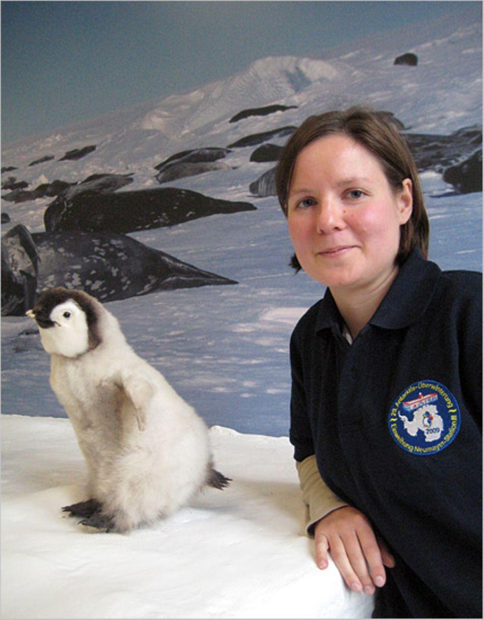Die Geophysikerin Heidi Turpeinen macht Bekanntschaften mit Pinguinen