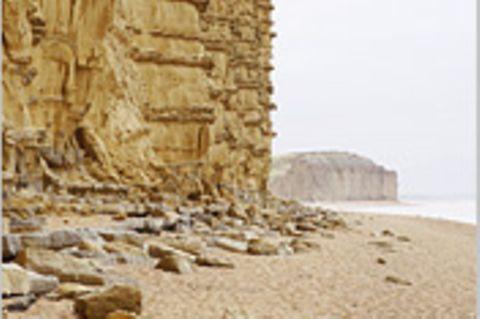 Südengland: Jagd auf Dinosaurier-Fossilien