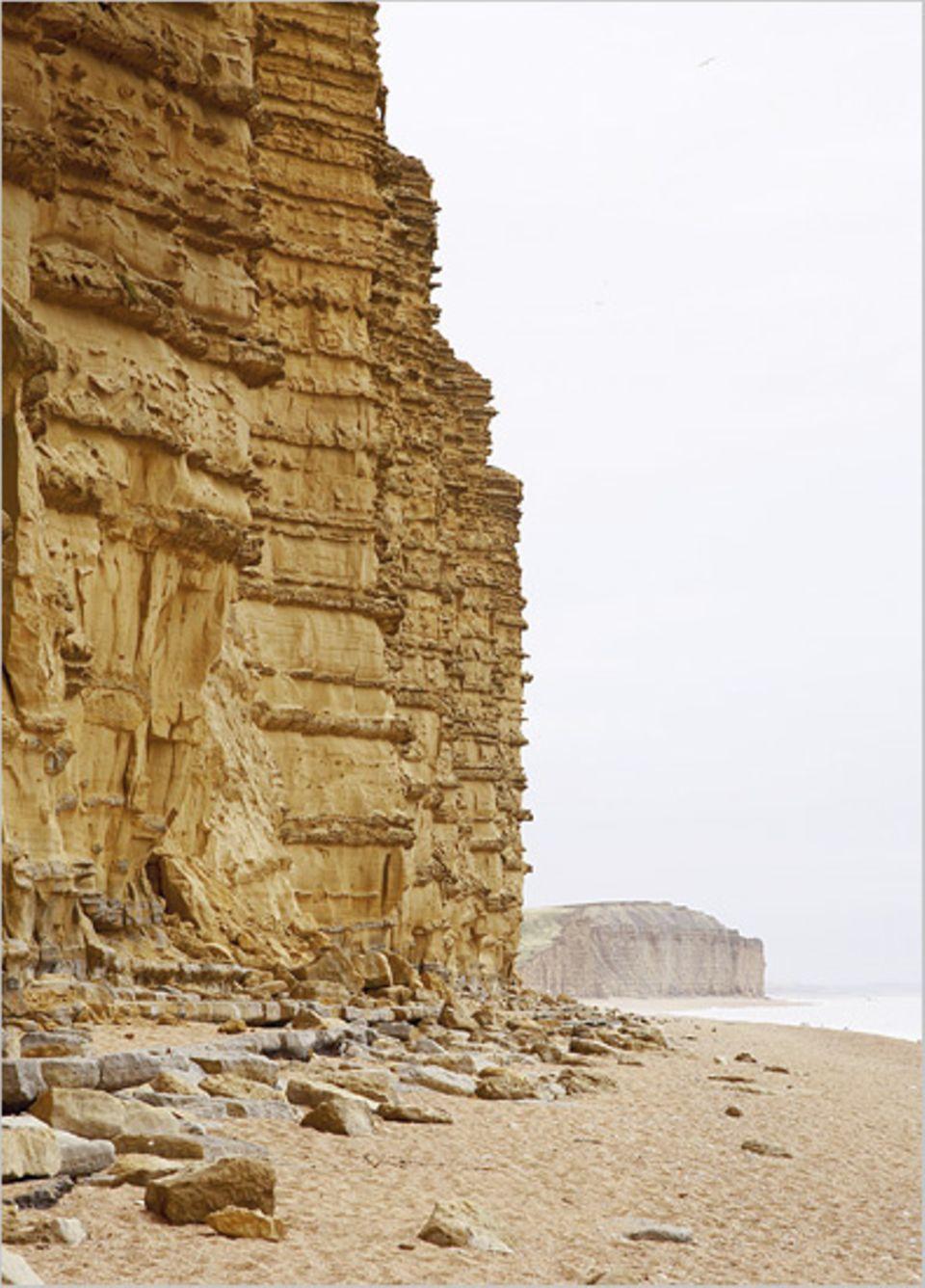 An den Klippen der West Bay studieren Geologen aus aller Welt die Spuren der Erdzeitalter