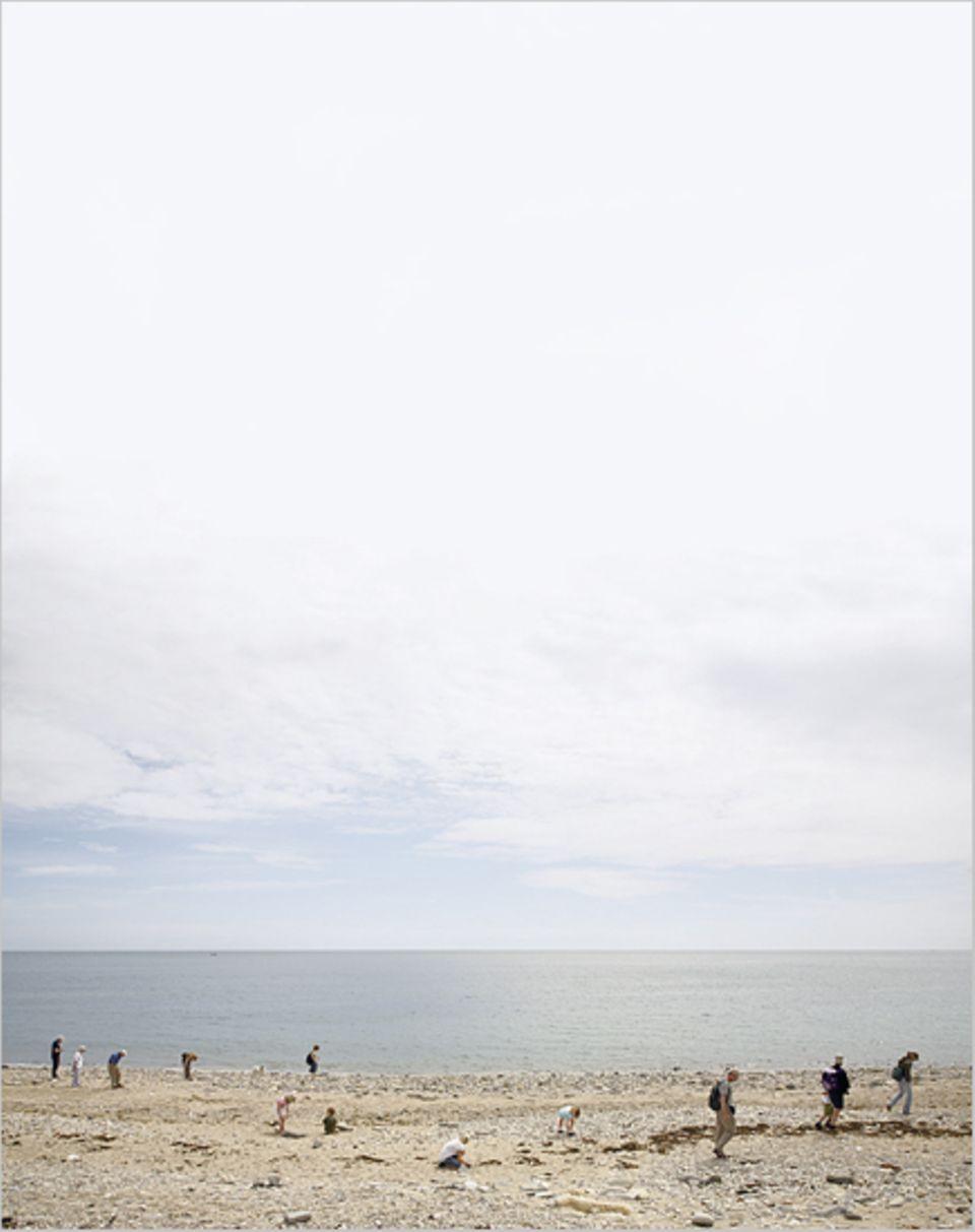 Fossiliensucher am Strand sehen immer gleich aus - den Kopf gesenkt und den Blick konzentriert auf den Boden gerichtet
