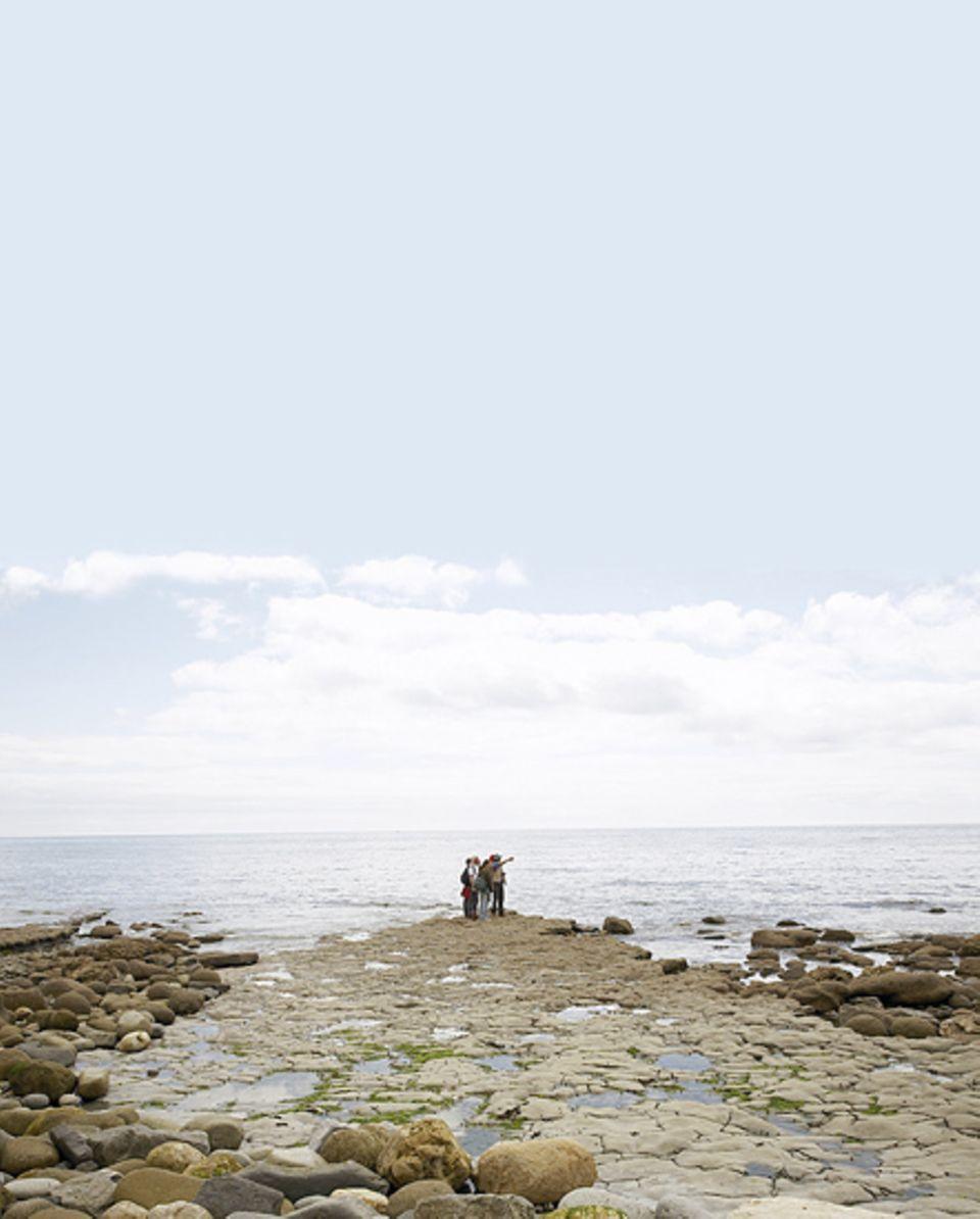 Regis in Dorset, ist vor allem in den Sommermonaten ein beliebtes Ferienziel. Hier werden Fossilienjäger garantiert fündig, denn die Steilküste bröckelt unaufhörlich