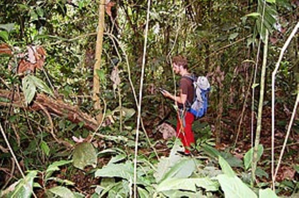 Bei der Arbeit: Bewaffnet mit dem GPS-Gerät und einer Machete ging es in den Dschungel.