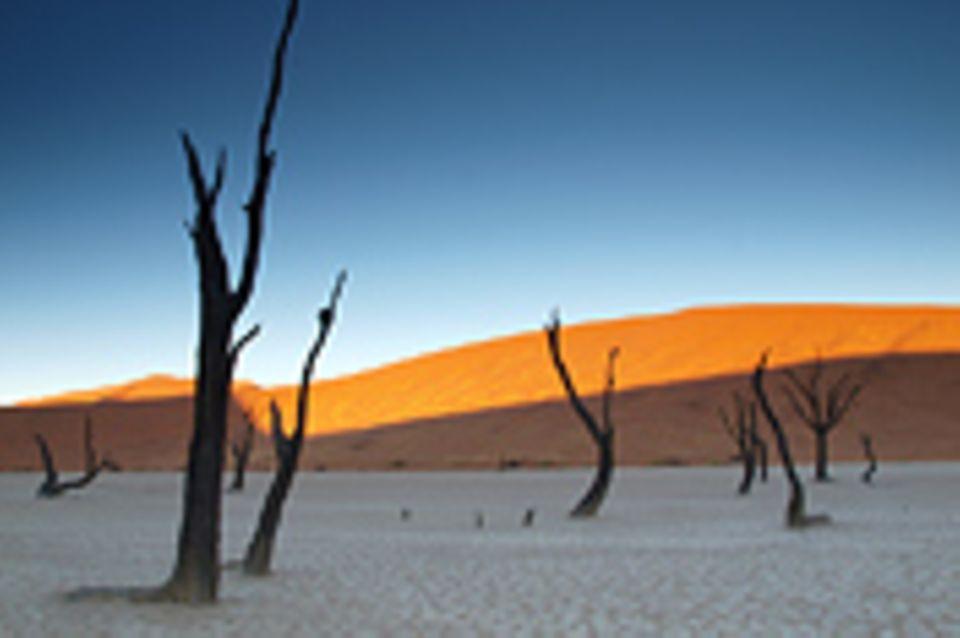Schiebepuzzle: Nr. 110: Naukluft Park Namibia