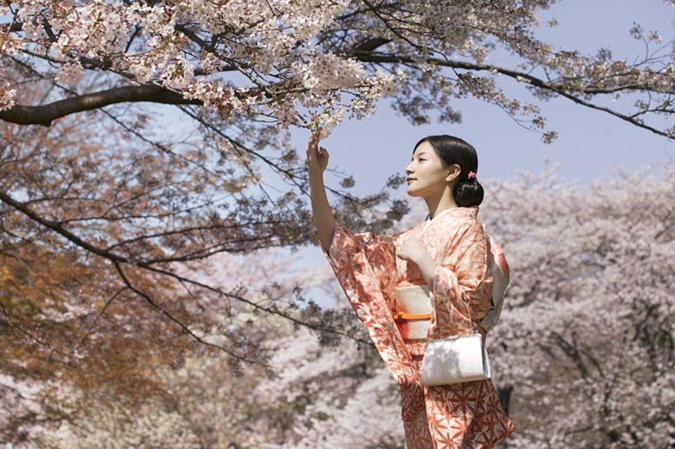 Ein echter Hingucker: Frauen im traditionellen Seidenkimono