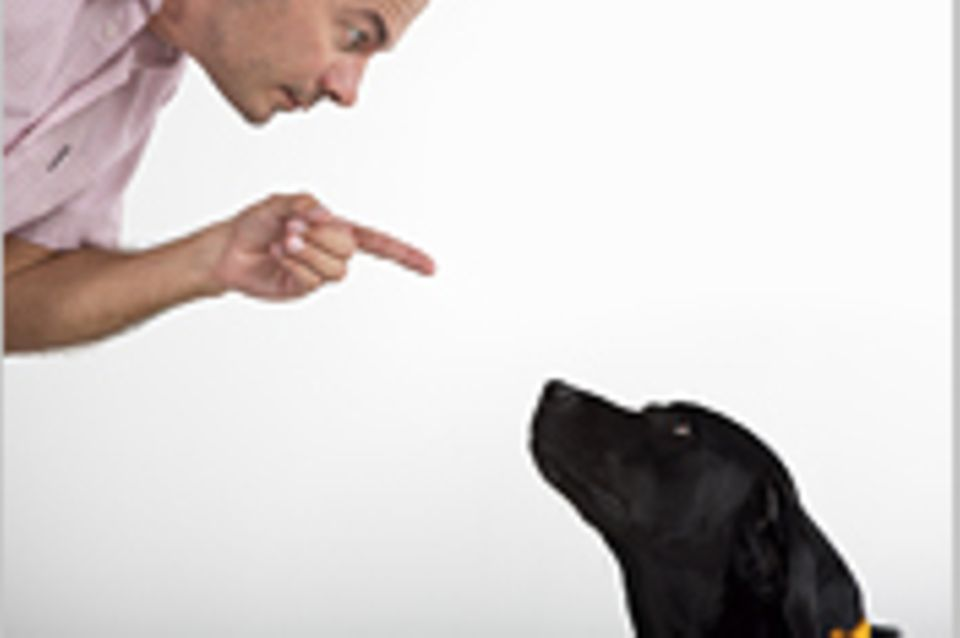 Können Hunde Gedanken lesen?