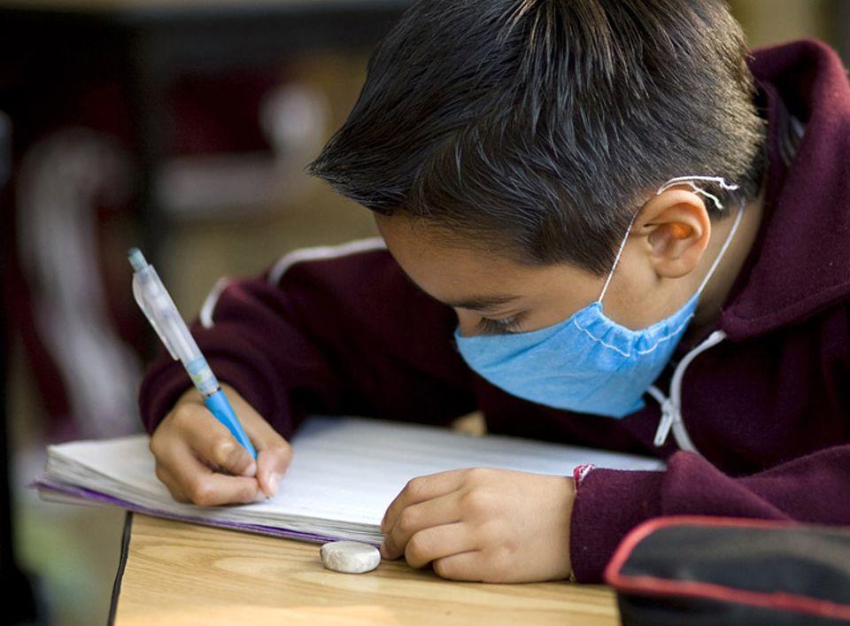 Schweinegrippe - eine Faktensammlung