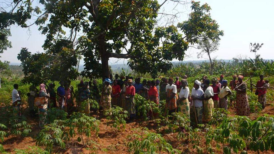 Eine Frauenkooperative in Bugasera, Ruanda; während einer Arbeitspause. Frauen, deren Männer im Genozid ermordet wurden arbeiten hier mit Frauen zusammen, deren Männern selber Täter waren