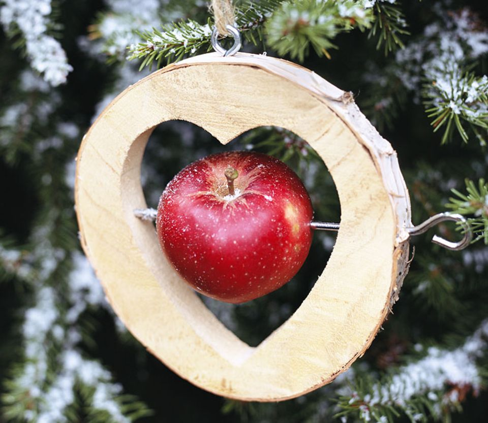 Grüne Weihnachten: Umweltfreundlicher Baumschmuck: Im Garten wächst das Bastelmaterial
