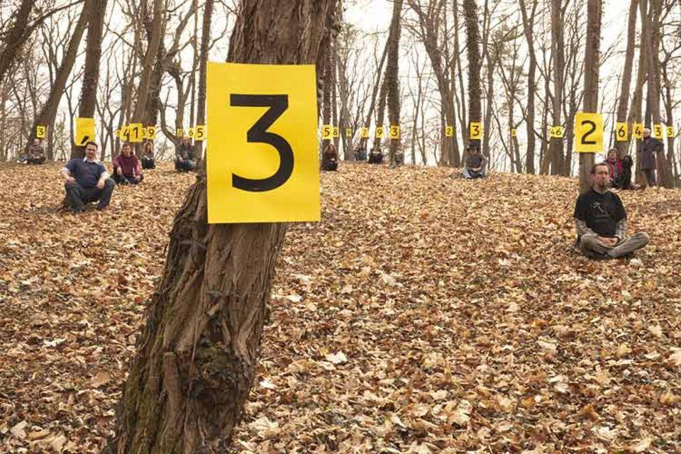 Die Zahl im Wald an lauter Bäumen sehen: Pi-aner mit ihrer wundersamen Ziffernfolge bei Nörten-Hardenberg