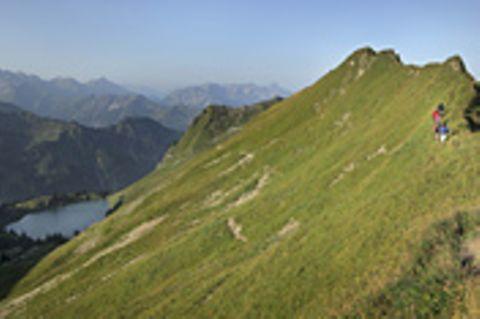 Linkliste: Die Alpen im Netz: Linkliste: Die Alpen im Netz