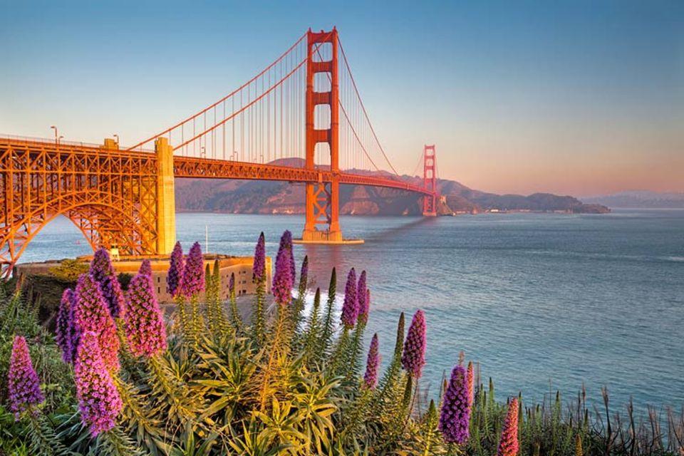 Im Golden Gate Park steht die hoch gelobte California Academy of Sciences: Sie ist Aquarium, Planetarium, Tropenhaus und Naturkundemuseum in einem