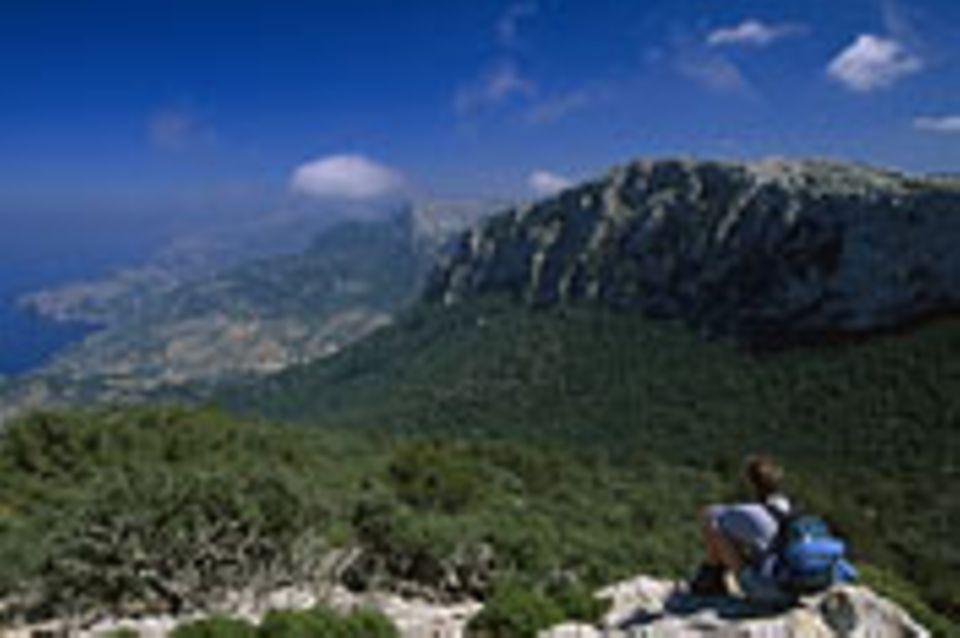 Mallorca aktiv