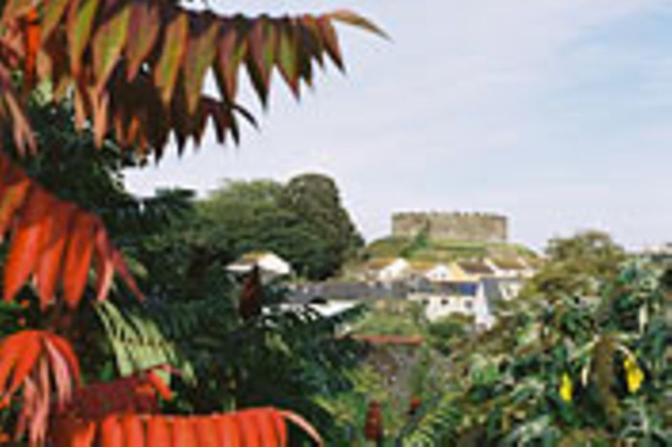 Transition Town: Testfall Totnes