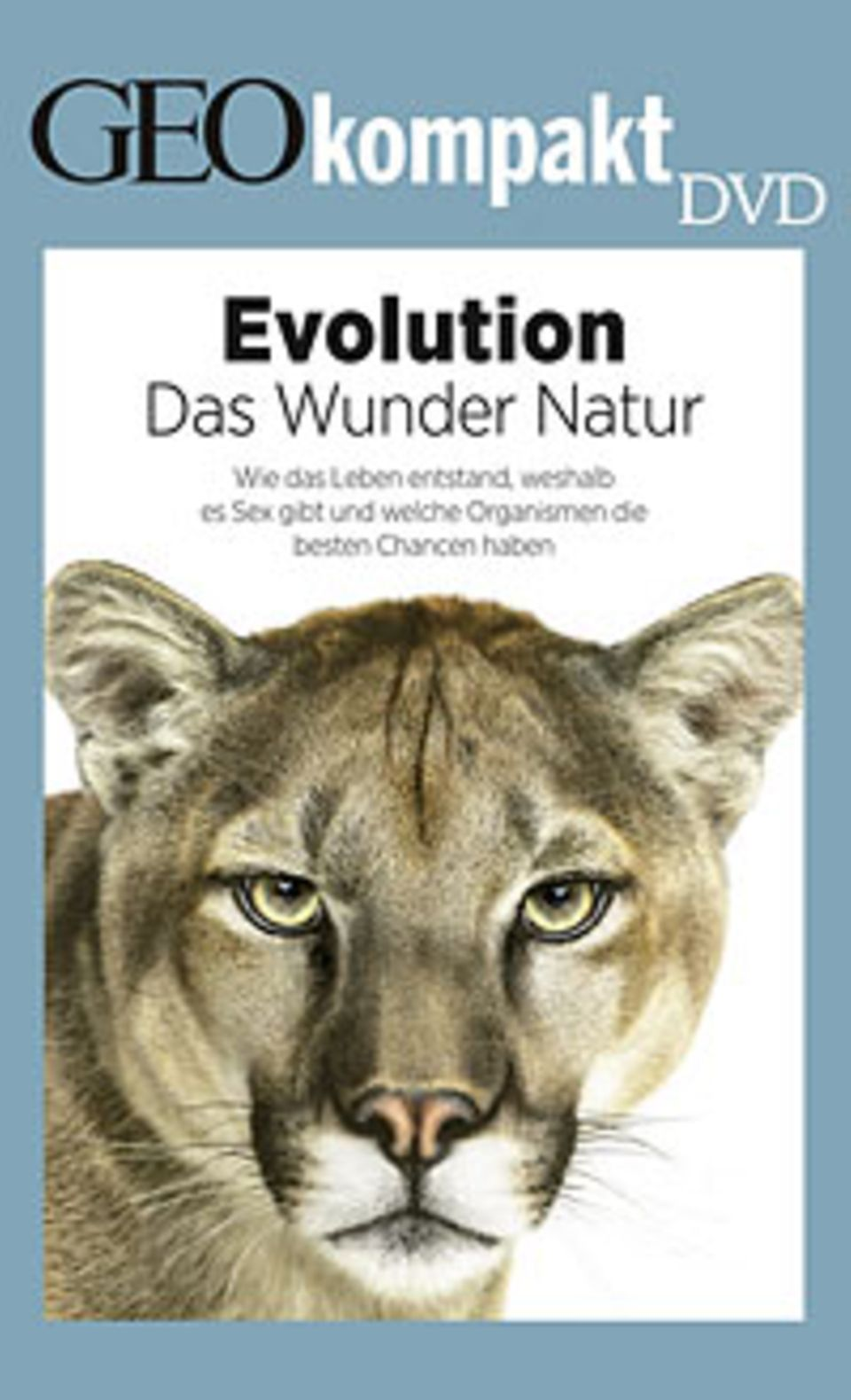 Evolution: GEOkompakt-DVD: Evolution