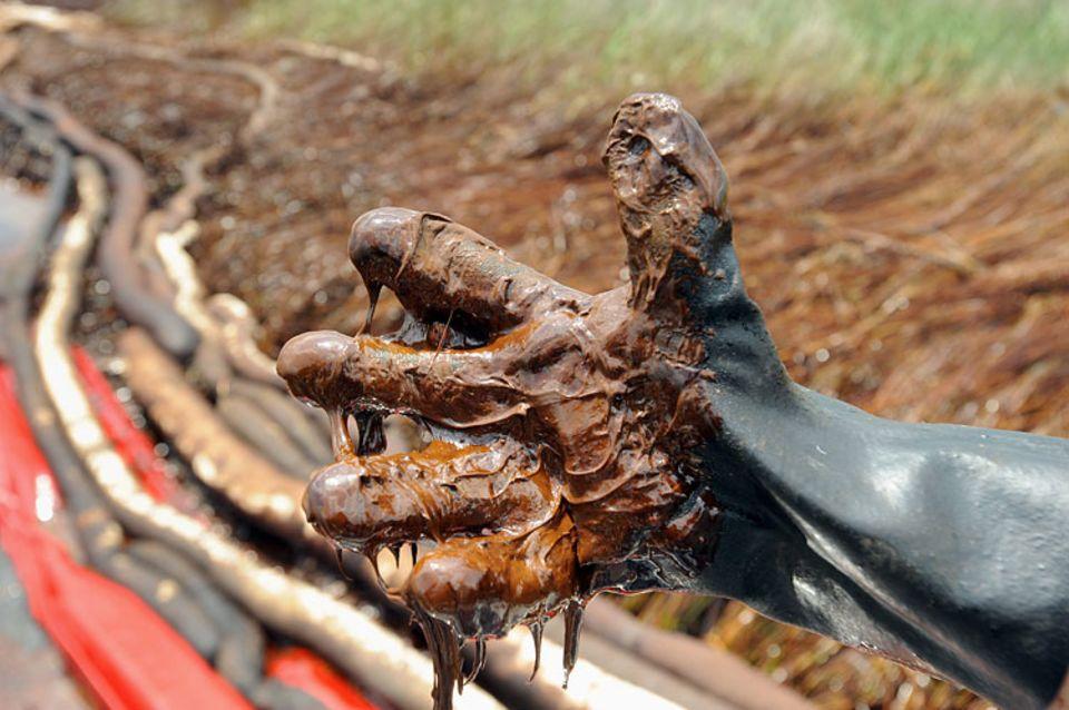 """""""Öl klebt an den Händen wie Schokoladensirup. Du brauchst ewig, um es abzuwaschen"""", sagt Paul Horsman, einer der Wissenschaftler vor Ort"""