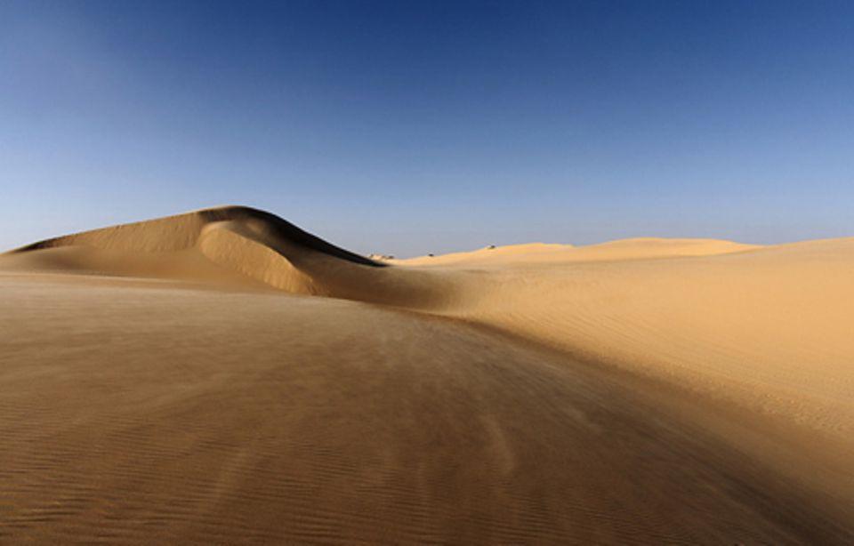 Schiebepuzzle: Nr. 230: Weiße Wüste